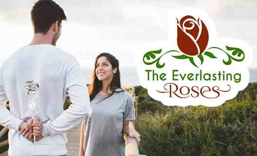 Ever Lasting Roses